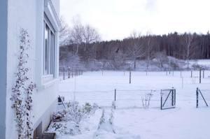 Neuschnee November 2008