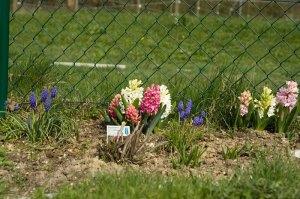2009-04-132