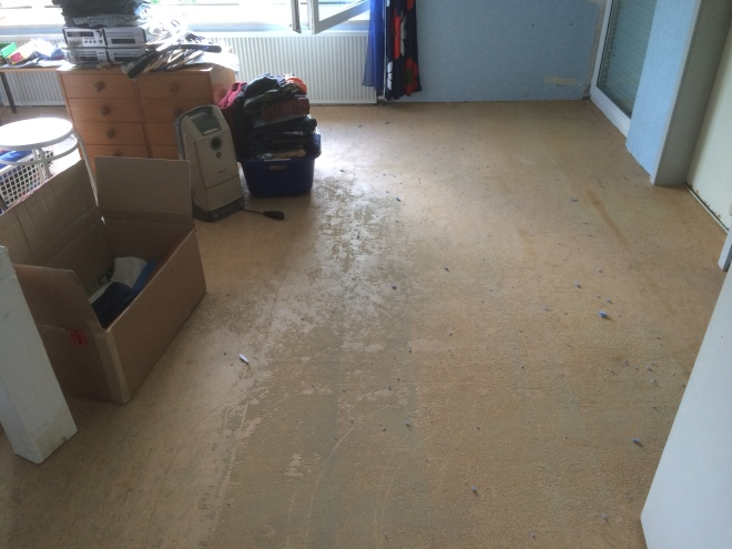 Raus mit dem alten Teppich - drunter kommt Linoleum zum Vorschein...